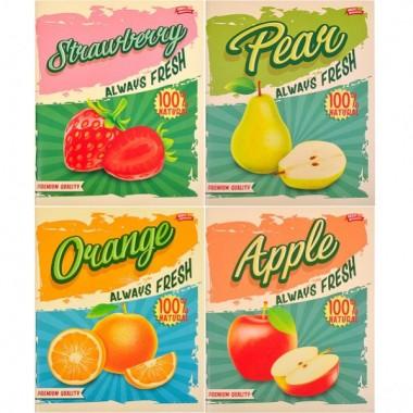Зошит кольорова 96 аркушів, клітинка «Висока якість»