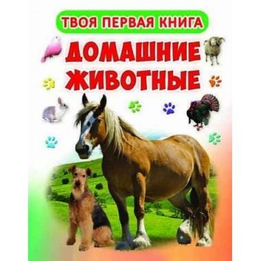 "Книжка-картонка А-4 ""Твоя перша книга. Домашні тварини"" (рос.) (9789669363916)"
