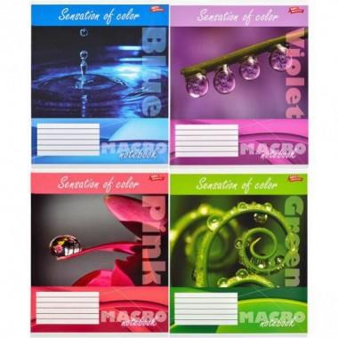 Зошит кольорова 36 аркушів, лінія «Макрозйомка кольору»