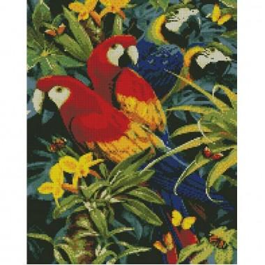 Алмазная вышивка Разноцветные попугаи 40х50см