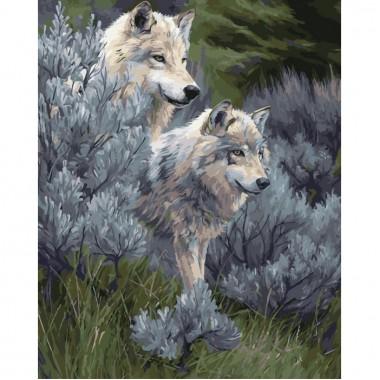 Картина за номерами ідейка Пара вовків 40х50см пезлі + фарби в комплекті