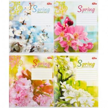 Тетрадь цветная 24 листа, клетка «Весна»