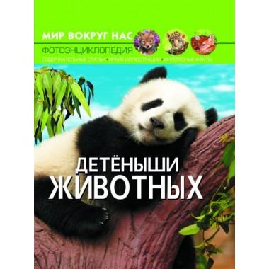 Мир вокруг нас. Детеныши животных (9789669369482)