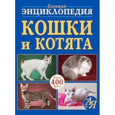 Большая энциклопедия. Кошки и котята от А до Я (9789669368591)