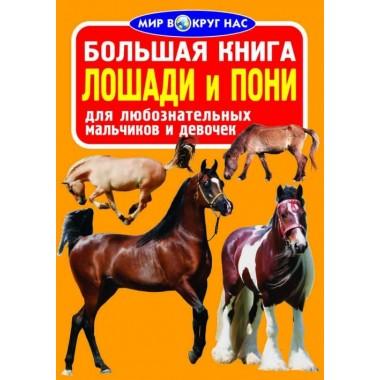Велика книга. Коні і поні (9786177352005)