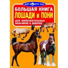 Большая книга. Лошади и пони (9786177352005)
