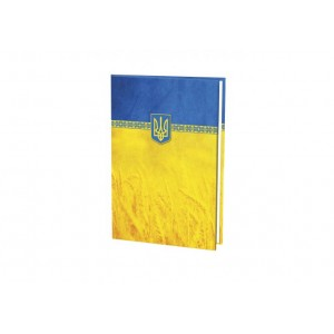 Папка до підпису повнокольорова, жовто-блакитна
